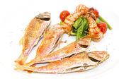 Grilled fish with shrimp salad — Stock Photo