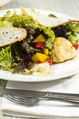 Salad vegetables and goat cheese — Stock Photo