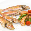 Grilled fish with shrimp salad — Stock Photo #42660563
