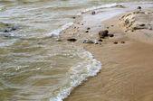 Douces vagues de la mer — Photo