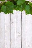 Grapevine leaves on wooden background — Stock Photo
