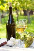 白ワインとボトルを 2 杯 — ストック写真