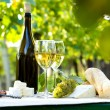 Two glasses of white wine and bottle — Stock Photo