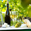 Two glasses of white wine and bottle — Stock Photo #33110809
