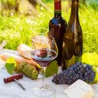Stock Photo: Two glasses of red and white wine and bottle