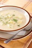 Homemade soup of sauerkraut, cream and potatoes — Stock Photo