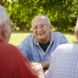 Group of senior men having fun and laughing in park - Stock Photo