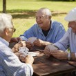 Active seniors, group of old friends playing cards at park — Stock Photo #21231687