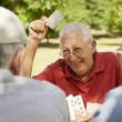Active seniors, group of old friends playing cards at park — Stock Photo #21231771