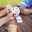 Active seniors, group of old friends playing cards at park — Stock Photo #21231821