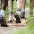 Shoes of trekking in wood and walking in row - Stockfoto