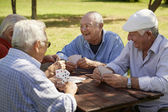 Active seniors, group of old friends playing cards at park — Stok fotoğraf