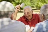 Los adultos mayores activas, grupo de viejos amigos jugando a las cartas en el parque — Foto de Stock