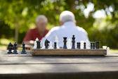 Aktywny na emeryturze, dwóch starych znajomych gra w szachy w parku — Zdjęcie stockowe