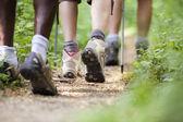 Zapatos de trekking en madera y caminando en fila — Foto de Stock
