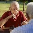 Active retired , two senior men playing chess at park — Stock Photo