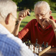 Active retired , two senior men playing chess at park - Stok fotoğraf