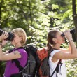 Two women hiking in forest and looking with binoculars - Stockfoto