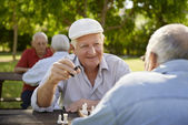 Active retired seniors, two old men playing chess at park — Foto de Stock