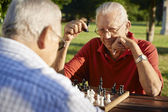 Active retired , two senior men playing chess at park — Photo