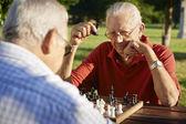 Retraité actif, deux hommes jouant aux échecs dans le parc — Photo