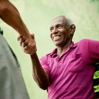 Old black and caucasian men meeting and shaking hands in park — Stock Photo