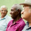 Stock Photo: Group of old black and caucasimen talking in park