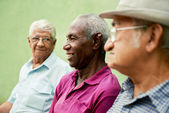 Group of old black and caucasian men talking in park — Stok fotoğraf