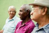 Gruppo di vecchi uomini neri e caucasici, parlando nel parco — Foto Stock