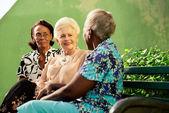 Grupo de idosos mulheres pretas e branca, falando em parque — Foto Stock