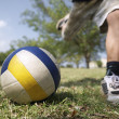 Kids playing soccer game, young boy hitting ball in park - Stock Photo