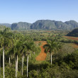 View of hills and mountains in Vinales, Cuba - Stock Photo