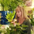 Woman working in flower shop arranging plant and pots — Stock Video