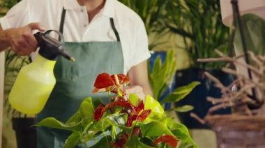Man working in flower shop spraying plant and pots — Stock Video