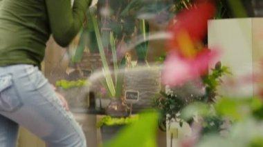 Mulher comprando flores na floricultura — Vídeo Stock