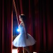 Постер, плакат: Woman as classic dancer looking at stalls before ballet