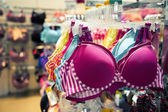 Clothing and retail store-view of shop with bra — Stock Photo