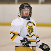 PeeWee Hockey — Stock Photo