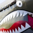 P-40 Warhawk WWII Aircraft — Stock Photo #12669199