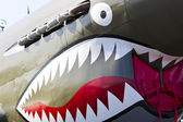 P-40 Warhawk WWII Aircraft — Stock Photo
