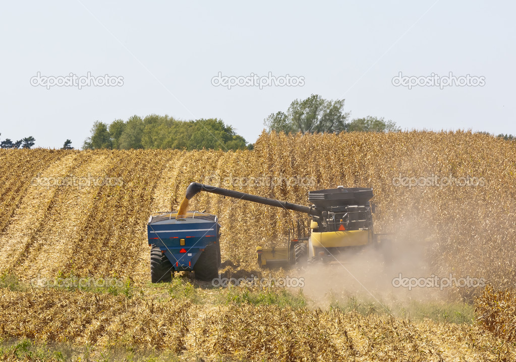 A combine and a tractor work to harvest a Midwest corn crop in Northeast Iowa. — Stock Photo #12888666