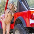 Stock Photo: Blonde Model With Car
