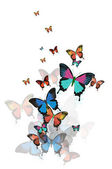 Colored abstract background with butterflies vector. — Stock Vector