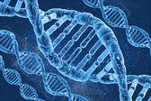 DNA molecules — Stock Photo