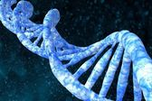 DNA molecules human — Stock Photo