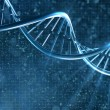 Human DNA — Stock Photo