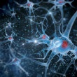 Stock Photo: 3D illustration of neuron