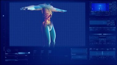 Anatomical study of human back — Stock Video