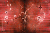 Digital illustration of a neuron in colour background — Stock Photo