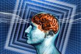 Mózgu — Zdjęcie stockowe
